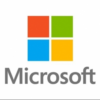 Mircosoft Inc