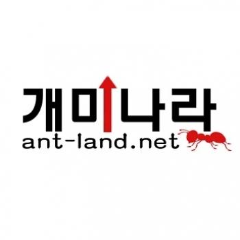개미 나라